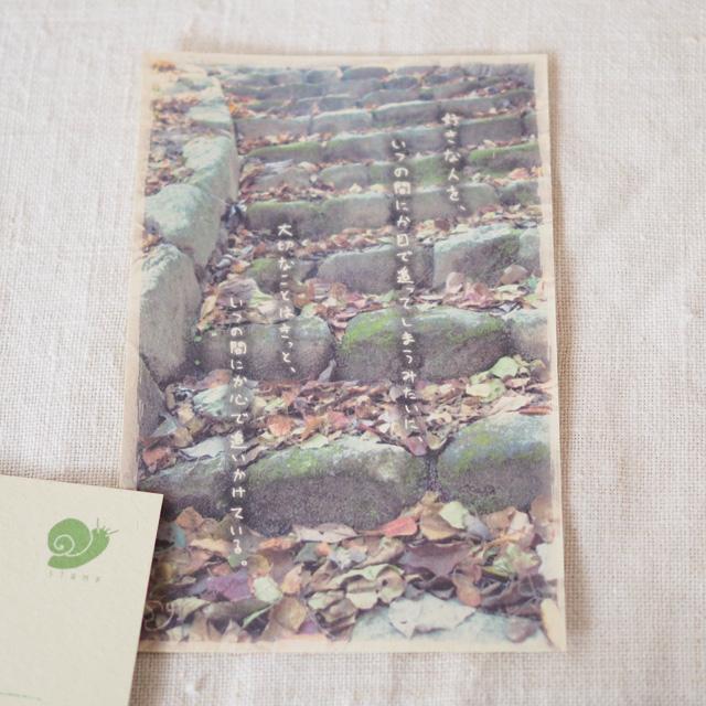 写真と言葉のポストカード/055おいかける