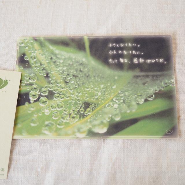 写真と言葉のポストカード/061あまぐも