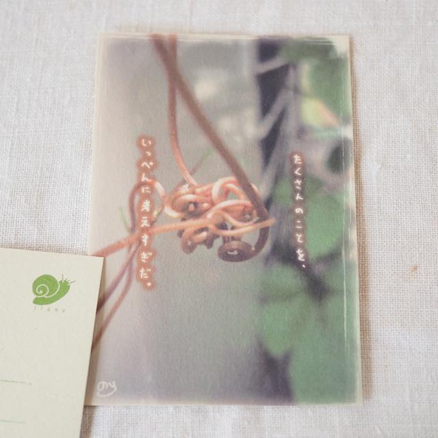 写真と言葉のポストカード/067ぐちゃぐちゃ
