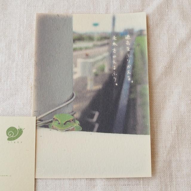 写真と言葉のポストカード/101カエル