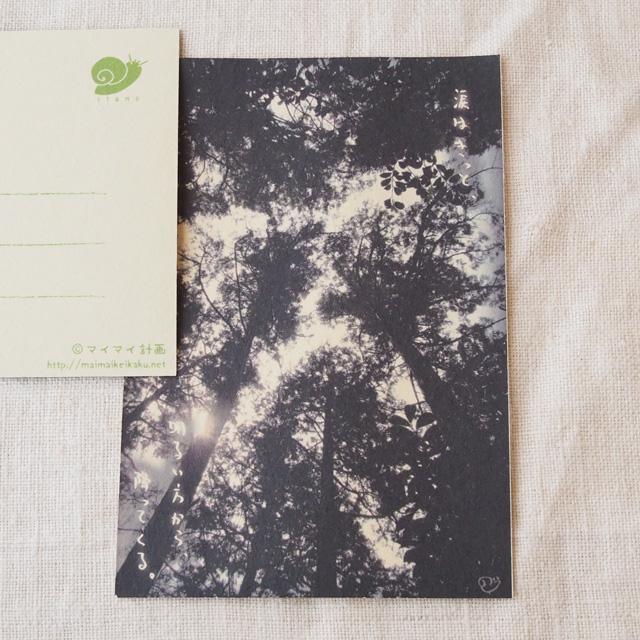 写真と言葉のポストカード/104雫