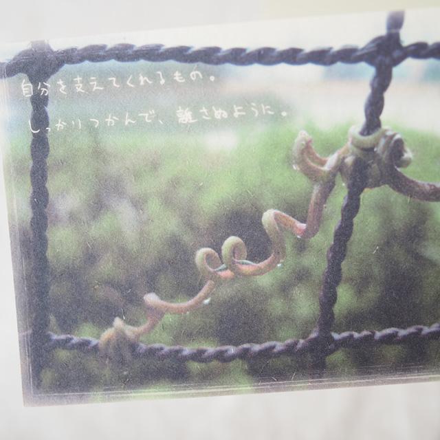 写真と言葉のポストカード/026支え