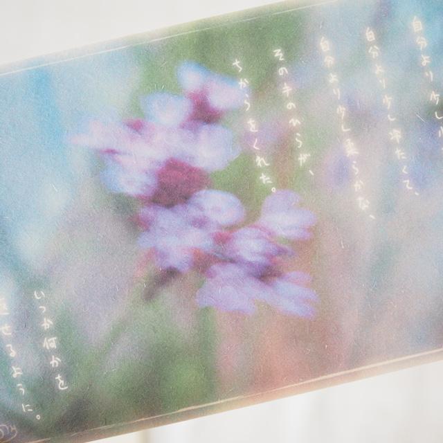 写真と言葉のポストカード/064握手