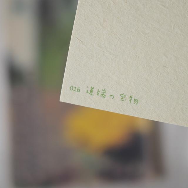 写真と言葉のポストカード/016道端の宝物
