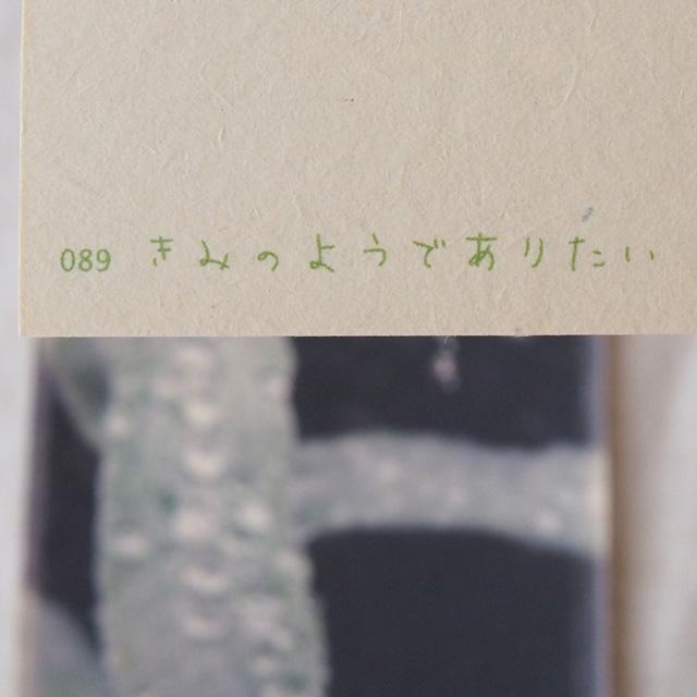 写真と言葉のポストカード/089きみのようでありたい