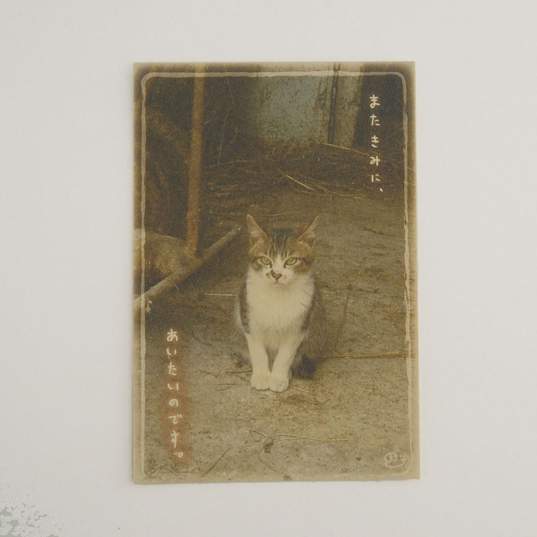 写真と言葉のポストカード/043おもいで