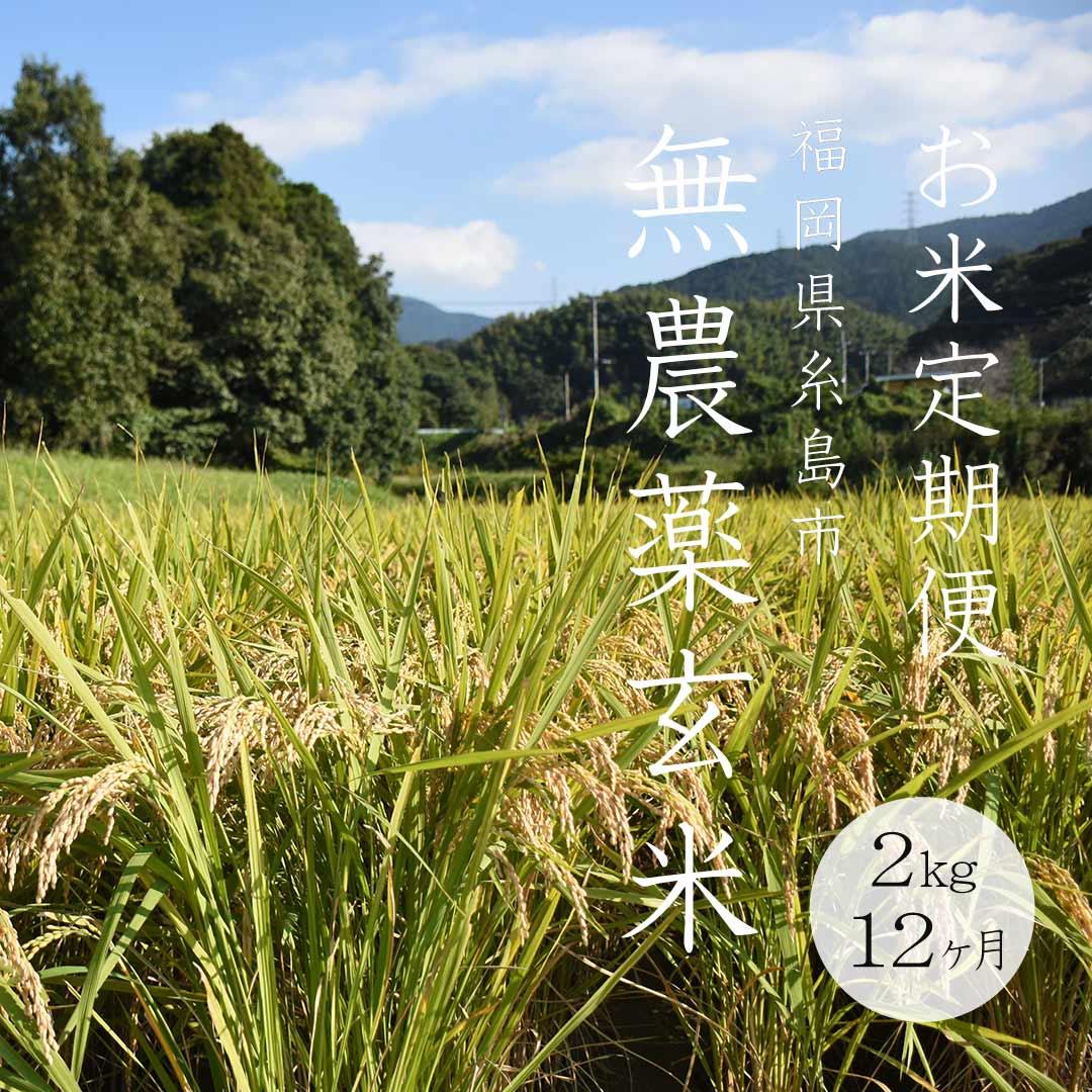 《定期便12ヶ月》令和2年度産/無農薬玄米/2kg