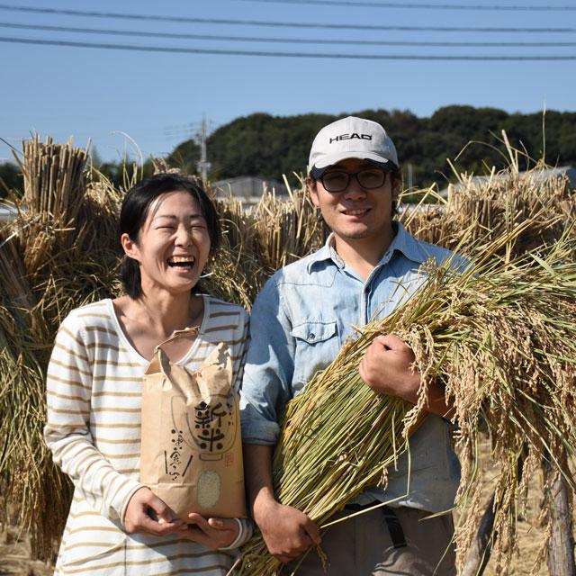 《定期便12ヶ月》令和2年度産/無農薬玄米/5kg