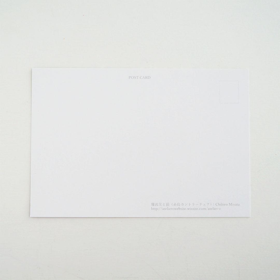 ポストカード/難波茨と猫(糸島カントリーチェア)