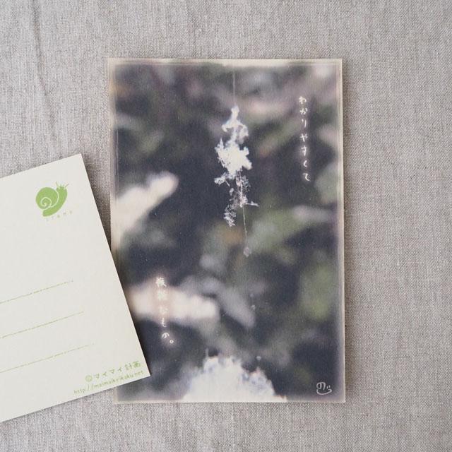 写真と言葉のポストカード/116