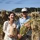 令和2年度産/無農薬白米/10kg