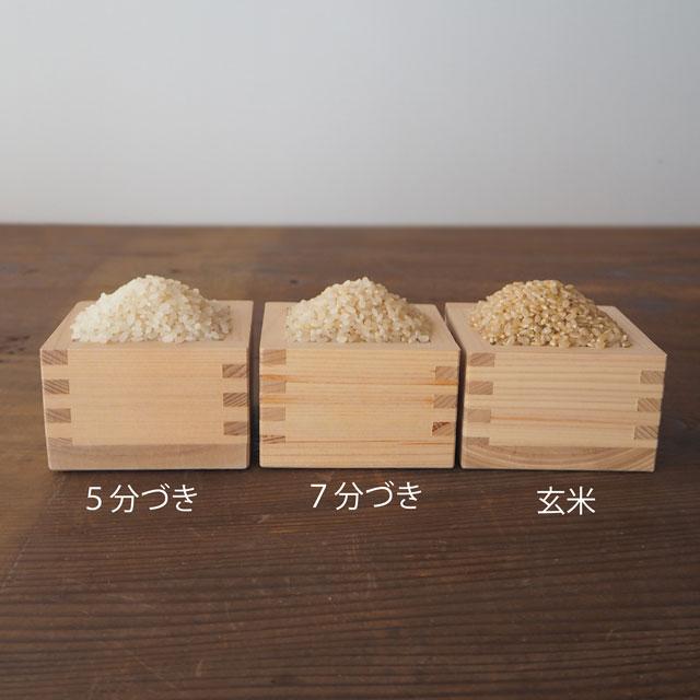 令和2年度産/無農薬玄米/5kg