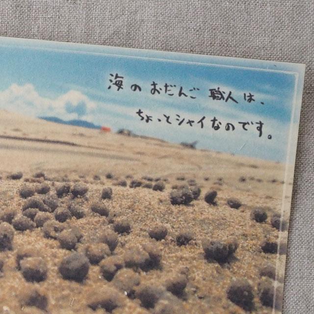 写真と言葉のポストカード/113