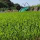 令和元年度産/無農薬玄米/10kg 今期終了