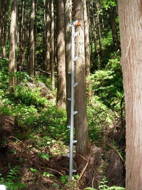 モンキーラダー アルミ製枝打ハシゴ3m(1.5m×2本) ML-3 2セット入り