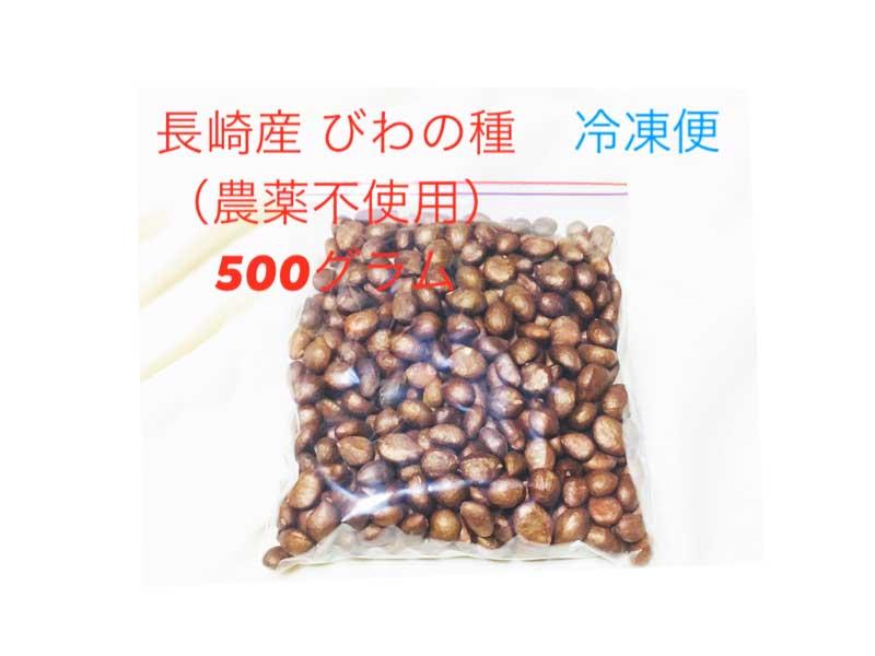 【びわの種ご飯、自家製杏仁豆腐などに!】びわの種 (500g) 冷凍便