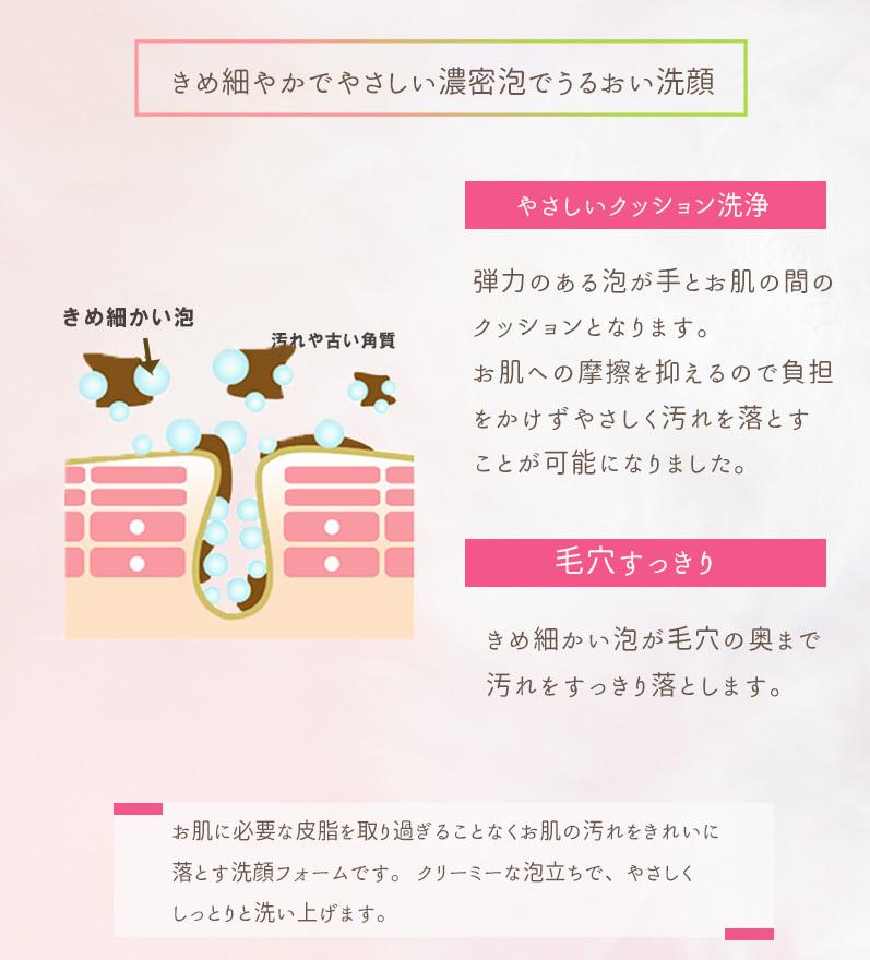 【NEW】フィオライズ N メイク落とし&洗顔 スペシャルケアセット