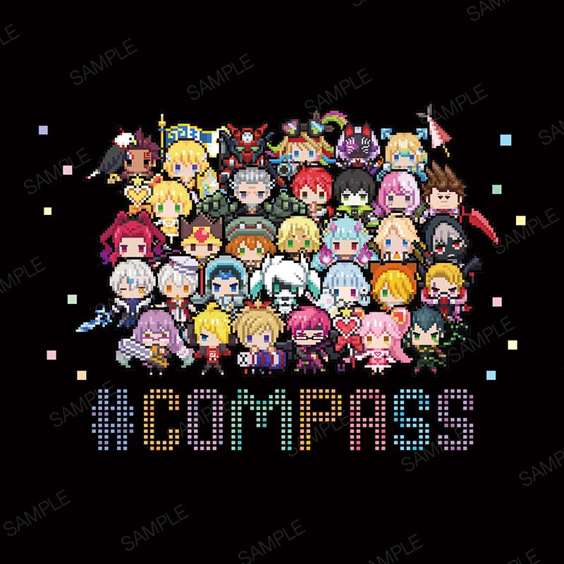 #コンパスT(ver.ドットヒーローズ type B)