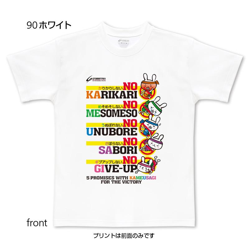 五箇条カメウサ(前面プリントTシャツ)