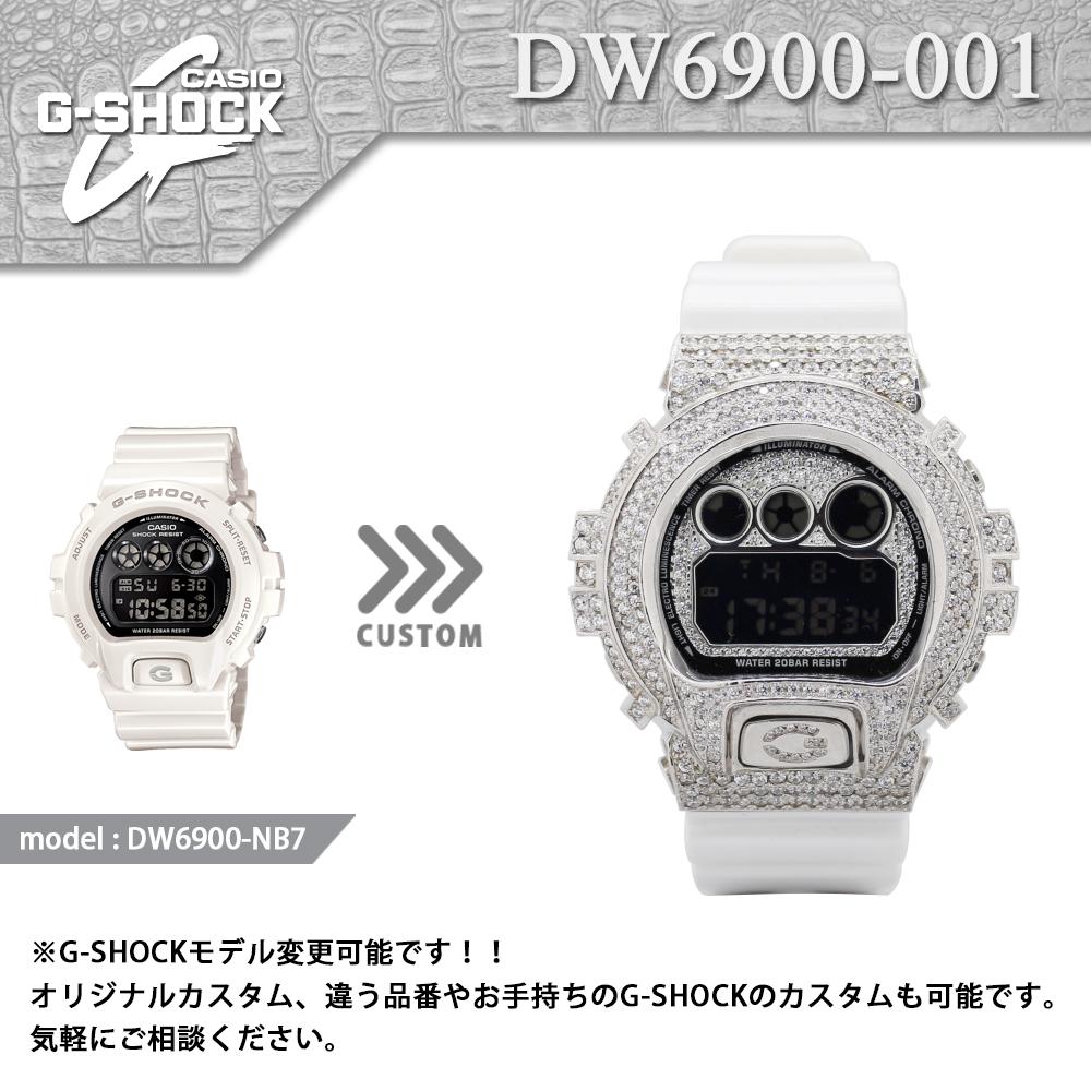 DW6900-001