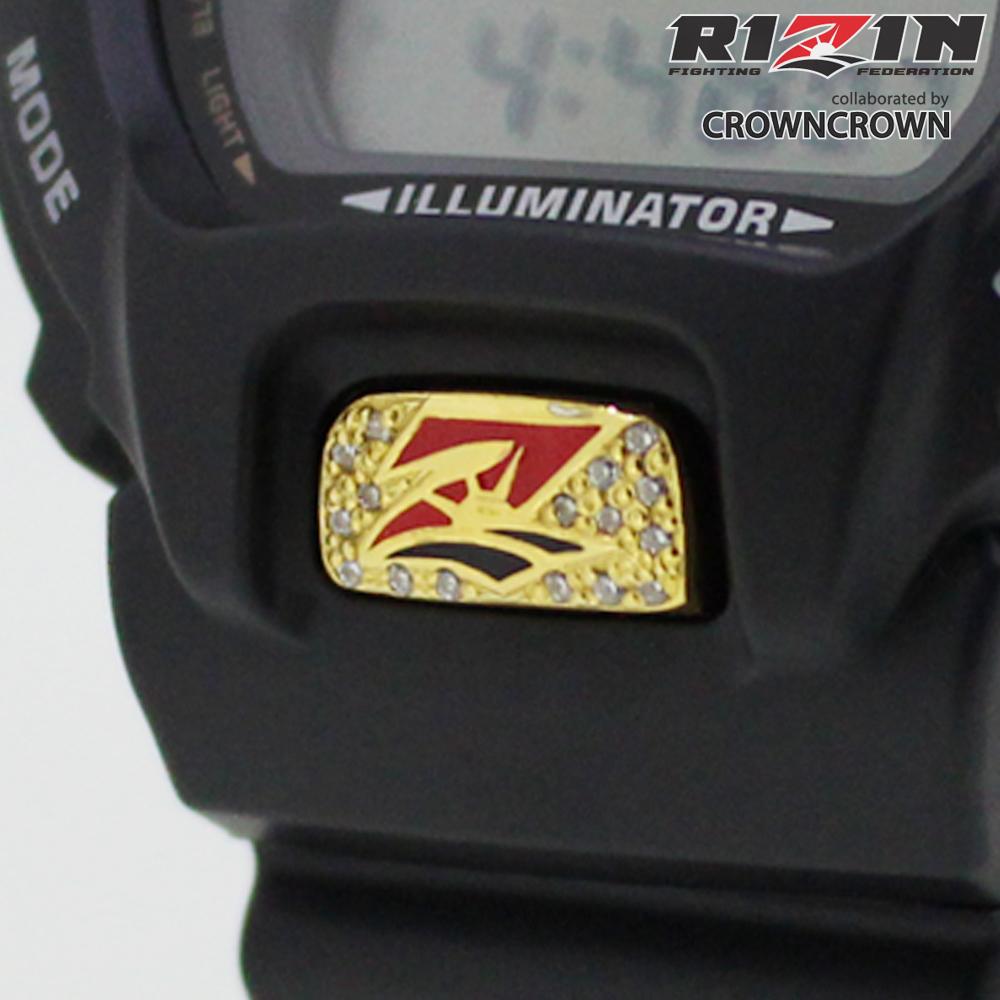 RIZIN-006