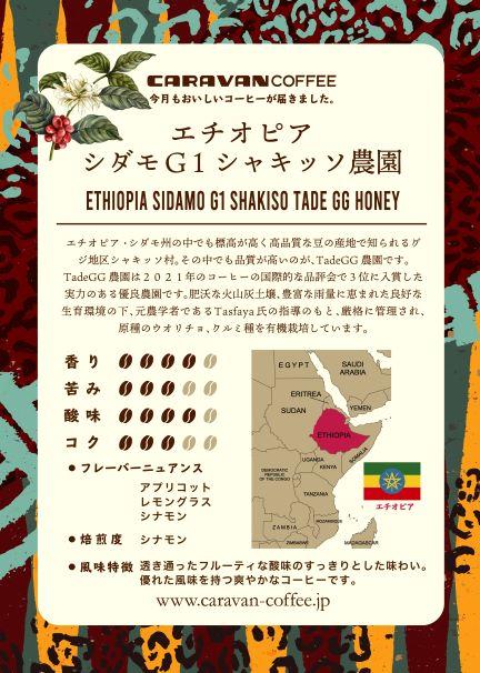 【9月マンスリーコーヒー】エチオピア シダモG1 シャキッソ農園 200g