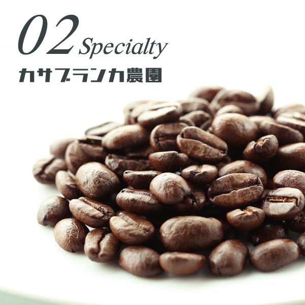 【スペシャルティ】 カサブランカ 200g