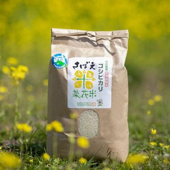 エコファーム舟枝:「令和2年産 こだわりのコシヒカリ さばえ菜花米(3kg/5kg/10kg)」福井県認証の特別栽培米