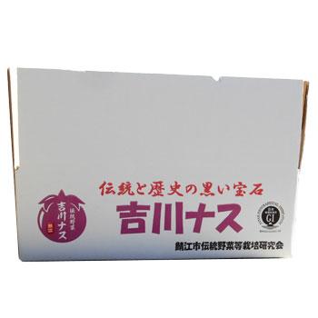 鯖江市伝統野菜等栽培研究会:「吉川ナス(わけあり)(中サイズ)9個入り」※季節商品※