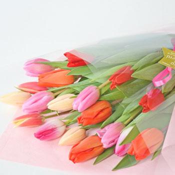 「ミックスブーケ 贈答用 20本入 8022」 富山県産チューリップの花束を産地直送