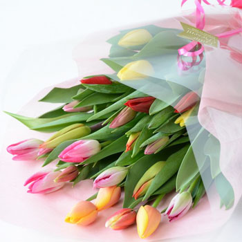「ミックスブーケ 贈答用 25本入 8023」 富山県産チューリップの花束を産地直送