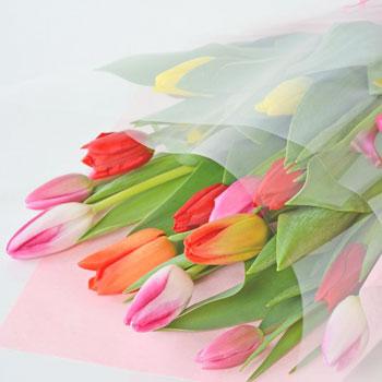 「ミックスブーケ 贈答用 15本入 8021」 富山県産チューリップの花束を産地直送
