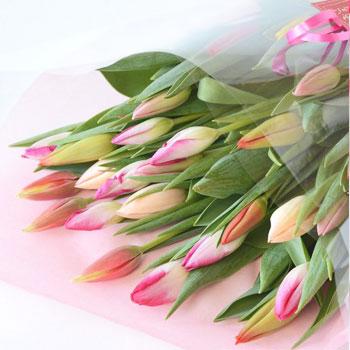 「ミックスブーケ 贈答用 30本入 8024」 富山県産チューリップの花束を産地直送