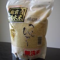真栄青果:令和2年産 越前こしひかり「清水米」「無洗米」30kg袋