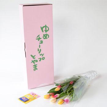 「ミックスブーケ ご自宅用 15本入 8031」 富山県産チューリップの花束を産地直送