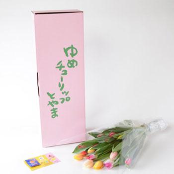 「ミックスブーケ ご自宅用 20本入 8032」 富山県産チューリップの花束を産地直送