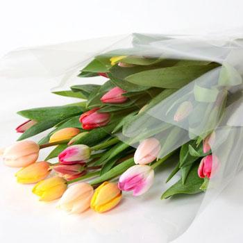 「ミックスブーケ ご自宅用 25本入 8033」 富山県産チューリップの花束を産地直送