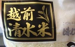 真栄青果:令和2年産 越前こしひかり「清水米」「無洗米」10kg袋