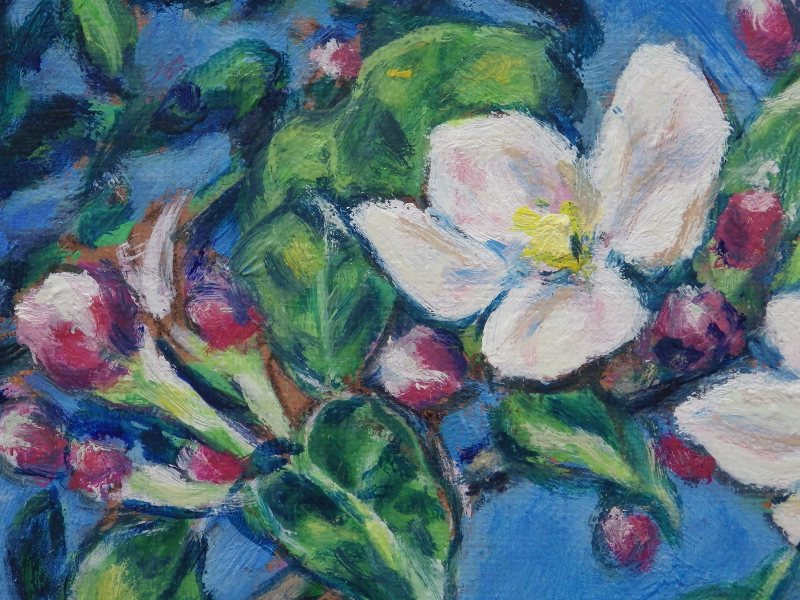 りんごの花咲く