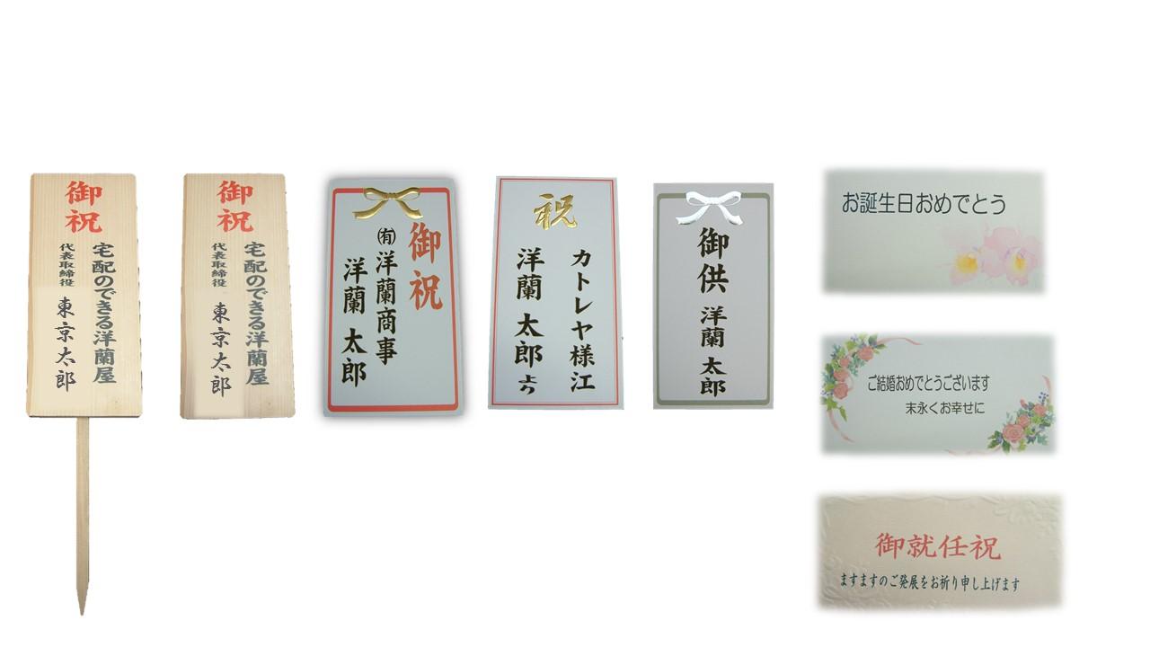 【胡蝶蘭】 赤リップ 3本立 30リン前後