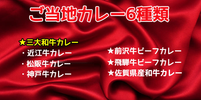 ギフト用★ブランド肉カレーセット6食 <ギフト用巾着袋入り>