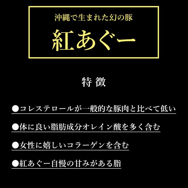 【メール便対応・送料込】 紅あぐーカレー 2個セット