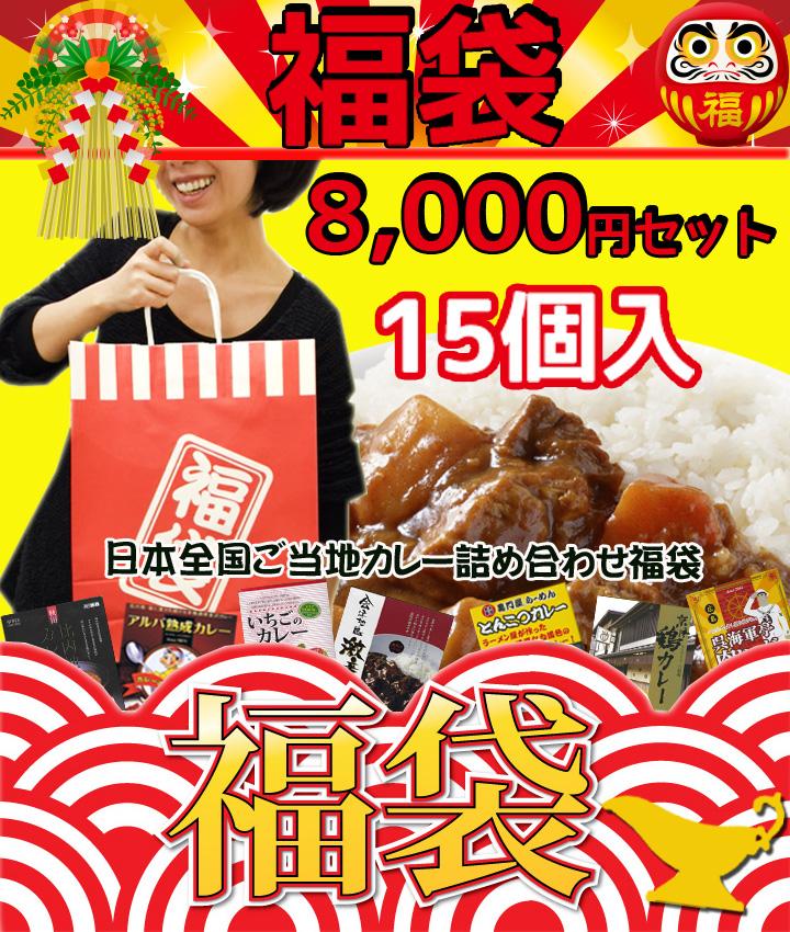 福袋8,000円セット 送料込 <ご当地カレー15個詰め合わせ>