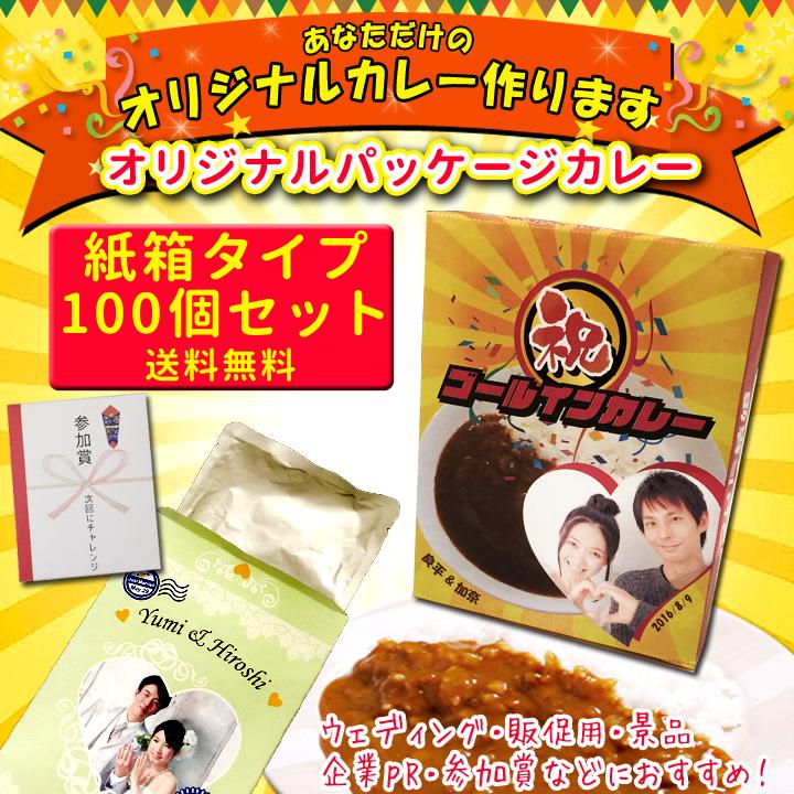 オリジナルパッケージカレー■紙箱■100個セット