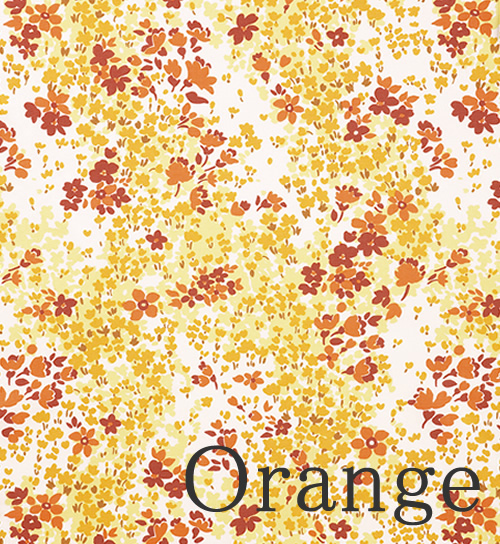 Orange/オレンジ
