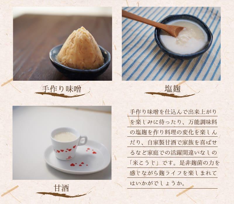 米麹 生 500g 九州 熊本県産