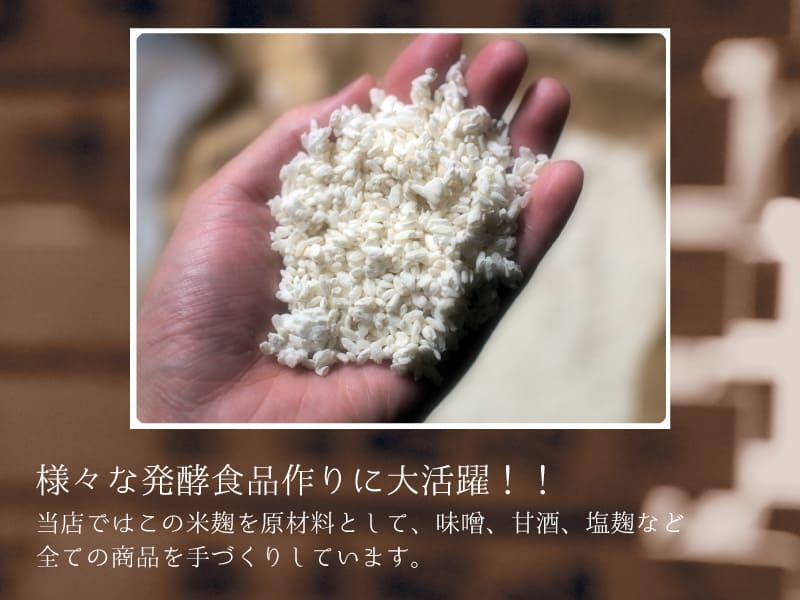 送料無料 米麹 生 5kg 九州 熊本県産