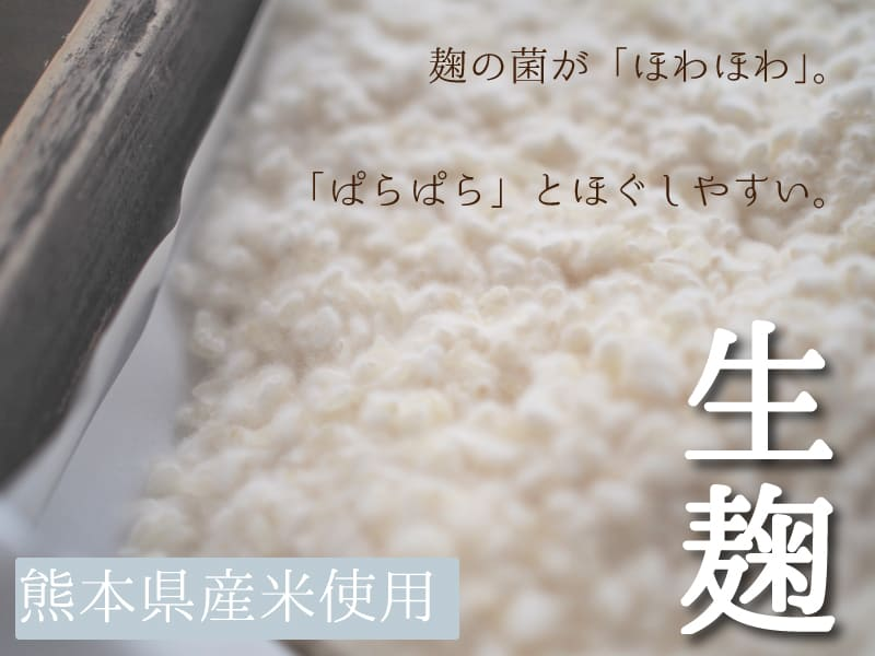 送料無料 米麹 生 10kg 九州 熊本県産