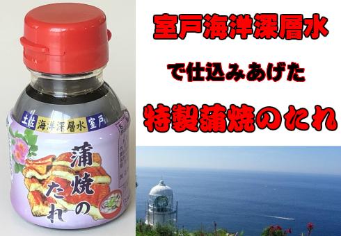高知特産!超特大うなぎ蒲焼き1尾(約220g)