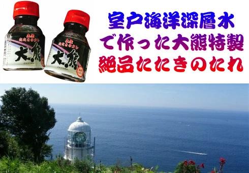 高知特産!鰹タタキ300g 1節(タレ1本)